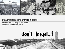 mauthausen remembrance day by vincentvega-1985
