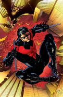 Nightwing 01 Cover by RodReis