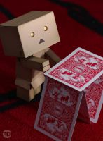 danbo build card house by sp333d1