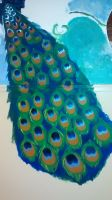 Mural: Peacock tail (work in progress) by InsideCarriesMind