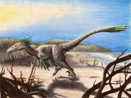 Deinonychus On the Beach by EWilloughby