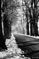 Winter road. by Phototubby