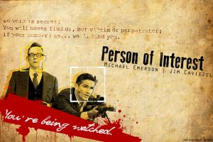 Person of Interest by ssuzie