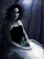 Shadows of Midnight by emilieleger