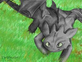 Toothless by Thewho109
