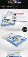 Photorealistic Catalog / Report Mock-up by idesignstudio