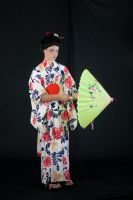 Geisha with Yellow Parasol by Della-Stock