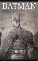 The Dark Knight by jedski