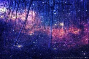 Enchanted Forest by naked-in-the-rain