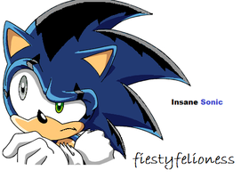 Insane Sonic by FeistyFelioness