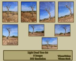 Light Dead Tree Set by Wicasa-stock