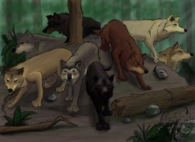 Eclipse Wolf Pack by Fang-Angel-of-Death