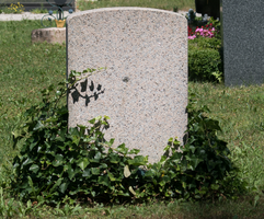 Gravestone Stock with ivy by Akxiv