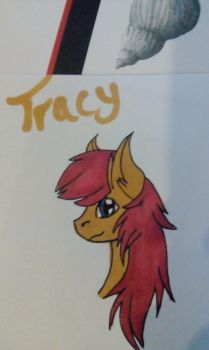 Tracy Swift pony by Hawk-d-mika