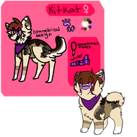 New Fursona Ref by KitKatQT