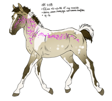 1108 Padro Foal Design for petshop101 by KimboKah