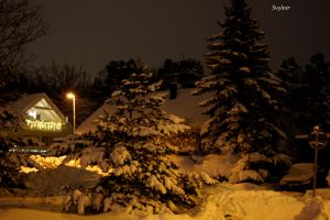 Covered with snow by herjansauga