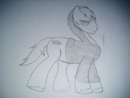 Pony Version by Pagels