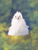 Albatross Cute Chick by Fany001