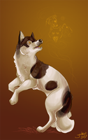 Spirit Dog by youkou