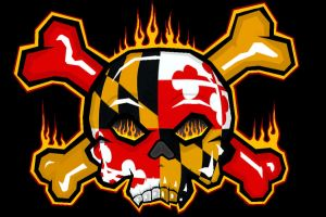 Maryland skull by Loofen