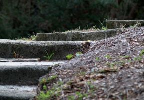 Steps to Fort Matanzas by TheInfernalDemon