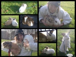 me and my lovely animals by so1what1i1am1myself