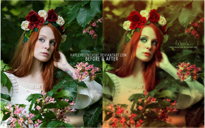 Before and After : Rose Maiden Retouch by HayleyGuinevere