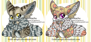 Chinkachu adopts closed by gold-adopts
