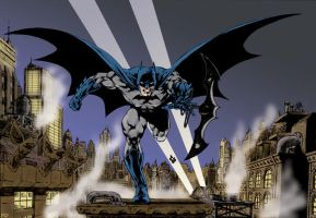 Batman in Brazil II by statman71