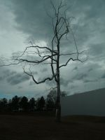 :Stock: Metal Tree 2 by RebeccaLongArt