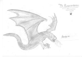 The Hungarian Horntail by Hedwigs-art