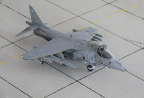 BAe Harrier Gr7 RAF 1 by marek1101