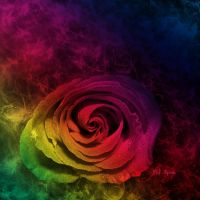 Rainbow Rose by MelGama