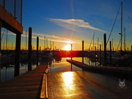 The Wet Red Boat Ramp by wolfwings1