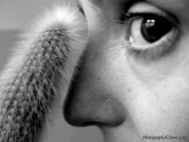 Noses by JeanGrey