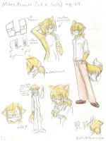 tails ref sheet by angelamyrose