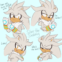 Silver the Snobhog by freedomfightersonic