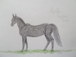 Apolla-HaRPG by obsidianhart