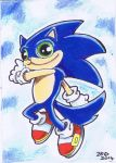 Sonic the Hedgehog Funny cat by KingZoidLord