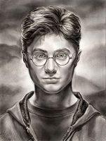 Harry Potter by Callista1981