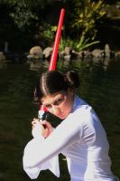 Princess Leia Organa 4 by biohazard-no-1