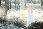 Of Sap and Frost by RaphaelleM