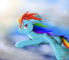Rainbow Dash by Ichigo-Star