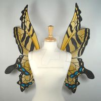 Tiger Swallowtail Wings Front by glittrrgrrl