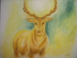 deer by Mosouito