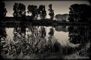 Lake shore by ferencjanos