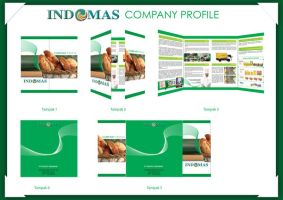 Company Profile by swarafun