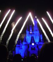 Wishes, 2009 - 31 by CanisCamera
