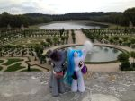Ponies Around the World 2013 submission 1 by OliverLacota